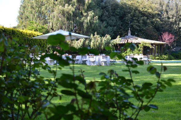 giardino-pianta3F712B7A-2F42-C684-970A-1EFE07BD7F00.jpg